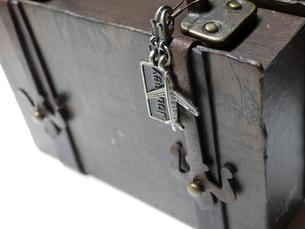 Traveling Bagの素材 [FYI00195210]