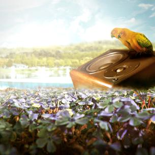 鳥のCGの写真素材 [FYI00195653]