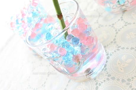 グラスの中のゼリーの写真素材 [FYI00195678]