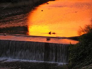 オレンジ色の川の素材 [FYI00195683]