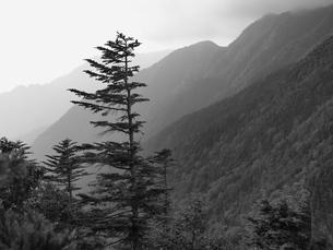 南アルプス Minami Alpsの写真素材 [FYI00196895]