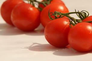 トマトの写真素材 [FYI00196957]