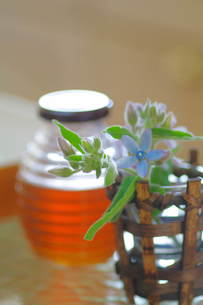 食卓の花の写真素材 [FYI00197006]