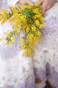 春を待つ〜春色のスカートの写真素材 [FYI00197098]