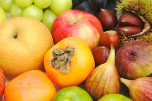 秋の果物の写真素材 [FYI00197272]