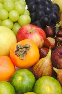 秋の果物の写真素材 [FYI00197281]