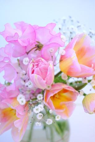 春のブーケの写真素材 [FYI00197409]