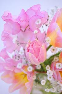 春のブーケの写真素材 [FYI00197411]