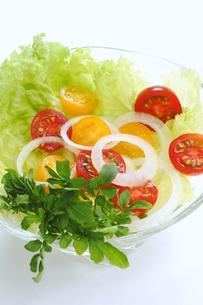 野菜サラダの写真素材 [FYI00197495]
