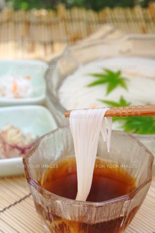 素麺の写真素材 [FYI00197520]