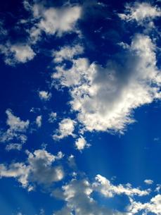 晴れた日の青空の写真素材 [FYI00197735]