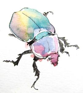 虫の写真素材 [FYI00197839]