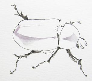虫の写真素材 [FYI00197841]