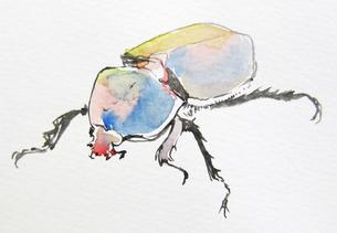 虫の写真素材 [FYI00197848]