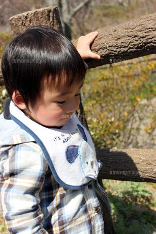 公園の手すりを持って下を見る男の子の写真素材 [FYI00198401]