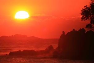 南伊豆弓ヶ浜の日の出の写真素材 [FYI00198412]