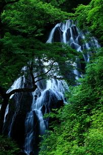 開運出世の滝の写真素材 [FYI00198416]
