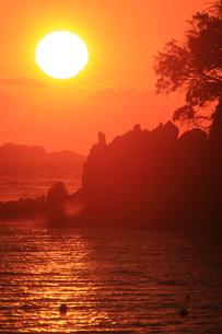 南伊豆弓ヶ浜の朝日の写真素材 [FYI00198423]