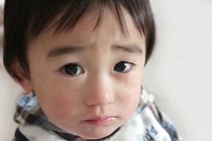泣く男の子の写真素材 [FYI00198426]