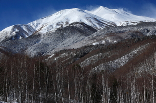 冬の乗鞍高原の写真素材 [FYI00198434]