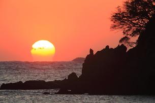 南伊豆・弓ヶ浜の朝日の写真素材 [FYI00198453]