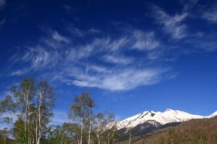 春の乗鞍高原の写真素材 [FYI00198469]