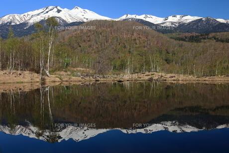 春の乗鞍高原 まいめの池と残雪の乗鞍岳の写真素材 [FYI00198478]