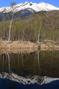 春の乗鞍高原 まいめの池と残雪の乗鞍岳の写真素材 [FYI00198492]
