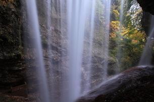 雷滝の写真素材 [FYI00198542]