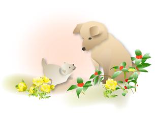 犬の親子の写真素材 [FYI00198674]
