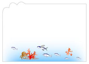 海の中フレームの写真素材 [FYI00198690]