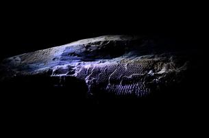 魚の化石の写真素材 [FYI00198846]