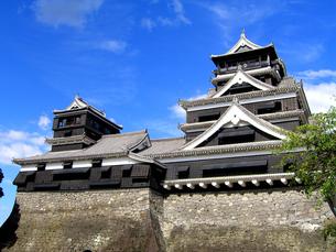 熊本城の写真素材 [FYI00199858]