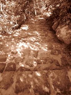 石の階段 セピアの素材 [FYI00199933]