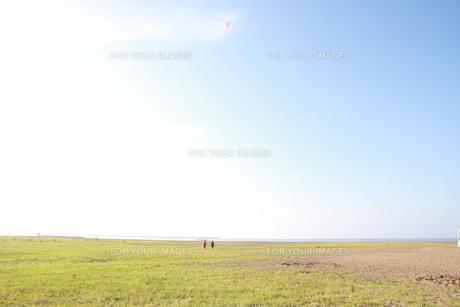 原っぱの写真素材 [FYI00199943]