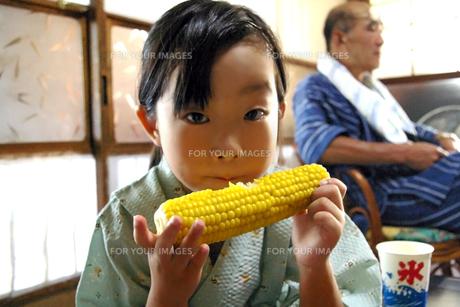 トウモロコシを食べる女の子の写真素材 [FYI00200032]