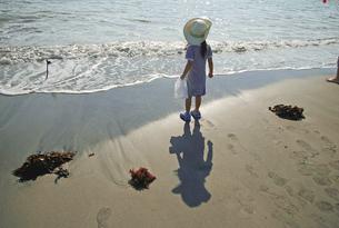 浜辺に佇む女の子の写真素材 [FYI00200048]