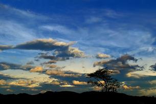 夕景 東の空の写真素材 [FYI00200054]