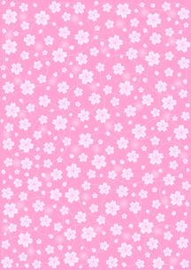 桜の背景模様の写真素材 [FYI00200187]