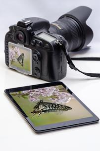 タブレットとカメラと写真の写真素材 [FYI00200236]