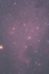 北アメリカ星雲の写真素材 [FYI00200319]