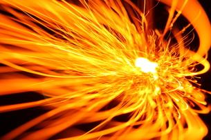 火の鳥の写真素材 [FYI00200331]