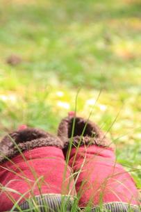 赤い靴の写真素材 [FYI00200384]