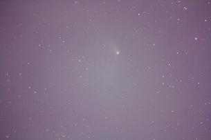 パンスターズ彗星の写真素材 [FYI00200393]