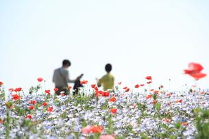 花に囲まれての写真素材 [FYI00200401]