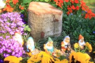 花に囲まれた小人たちの写真素材 [FYI00200404]
