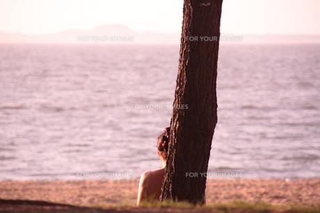 黄昏の時の写真素材 [FYI00200422]