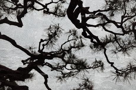 ジャポニズムの写真素材 [FYI00200463]