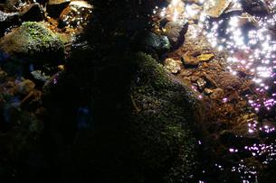 光の帯の写真素材 [FYI00200708]