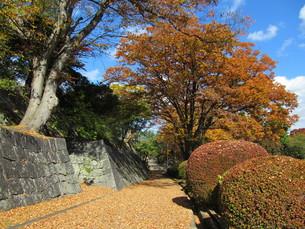 岩手県 盛岡城跡公園の写真素材 [FYI00200742]